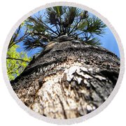 Round Beach Towel featuring the photograph Charred Palm Tree by Chris Mercer