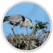 Round Beach Towel featuring the photograph Checking The Eggs by Deborah Benoit