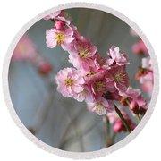Cheerful Cherry Blossoms Round Beach Towel