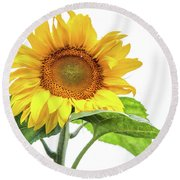 Round Beach Towel featuring the photograph Cheerful Flower Cheerful Mood by Jenny Rainbow