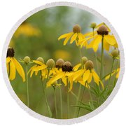 Round Beach Towel featuring the photograph Cheerful by Maria Urso