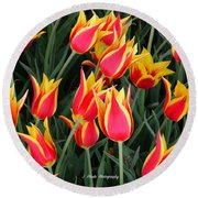 Cheerful Spring Tulips Round Beach Towel
