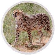 Cheetah No. 3 Round Beach Towel