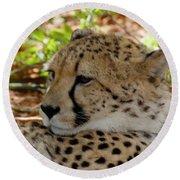 Cheetah No. 4 Round Beach Towel