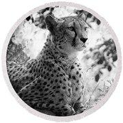 Cheetah B W, Guepard Black And White Round Beach Towel