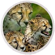 Cheetah Moods Round Beach Towel by Carol Cavalaris