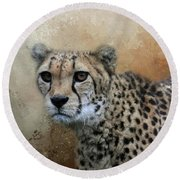 Cheetah Portrait Round Beach Towel