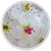 Round Beach Towel featuring the photograph Cherry Blooms by Darren White