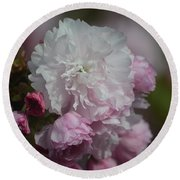 Cherry Blossom 2 Round Beach Towel