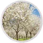 Cherry Blossom Time Round Beach Towel