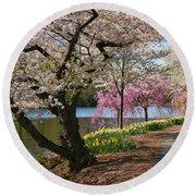 Cherry Blossom Trees Of Branch Brook Park 17 Round Beach Towel