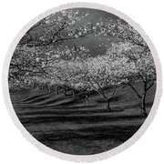 Cherry Blossoms 1 Round Beach Towel