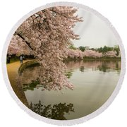 Cherry Blossoms Along The Tidal Basin 8x10 Round Beach Towel
