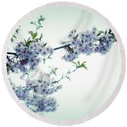Cherry Blossoms Round Beach Towel by Rachel Mirror