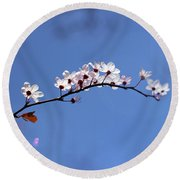 Round Beach Towel featuring the photograph Cherry Flowers With Lens Flare by Helga Novelli