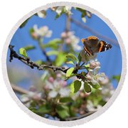 Monarch Butterfly On Cherry Tree Round Beach Towel