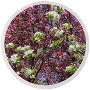 Cherry Tree And Pear Blossoms Round Beach Towel