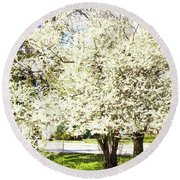 Cherry Trees In Blossom Round Beach Towel