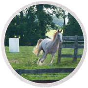 Chester On The Run Round Beach Towel by Donald C Morgan