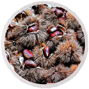 Chestnut Overload Round Beach Towel