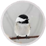 Round Beach Towel featuring the photograph Chickadee Bird In Snow by Christina Rollo
