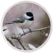 Chickadee - D010026 Round Beach Towel