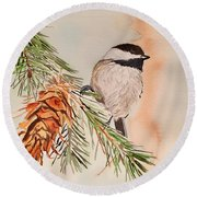 Chickadee In The Pine Round Beach Towel