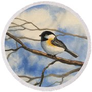 Chickadee On Branch Round Beach Towel