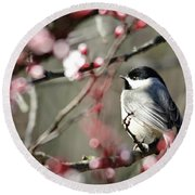 Round Beach Towel featuring the photograph Chickadee by Trina Ansel