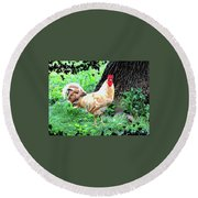Round Beach Towel featuring the mixed media Chicken Inthe Woods by Charles Shoup