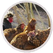 Round Beach Towel featuring the photograph Chicken Protest by Jeanette Oberholtzer