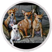 Chihuahuas Hanging Out Round Beach Towel