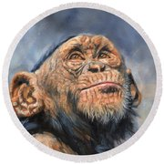 Chimp Round Beach Towel by David Stribbling