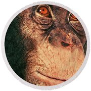 Chimp Round Beach Towel by Jack Zulli