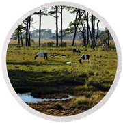 Chincoteague Ponies Round Beach Towel