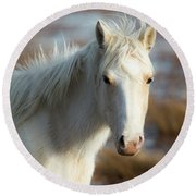 Chincoteague White Pony Round Beach Towel