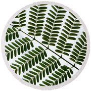 Chinese Albizia Leaf Pattern Round Beach Towel