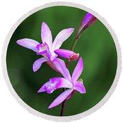 Chinese Ground Orchid Round Beach Towel
