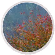 Chinese Red Maple Leaf Tree Round Beach Towel