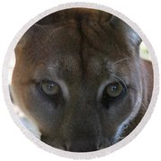 Round Beach Towel featuring the photograph Chinook by Laddie Halupa