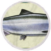Chinook Salmon Id Round Beach Towel