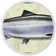 Chinook Salmon Id Round Beach Towel