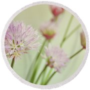 Chives In Flower Round Beach Towel by Lyn Randle
