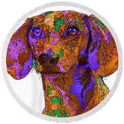 Chloe. Pet Series Round Beach Towel