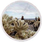 Cholla Cactus Garden Landscape II Round Beach Towel