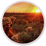 Round Beach Towel featuring the photograph Cholla Sunset In The Sonoran  by Saija Lehtonen