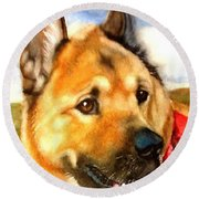 Chow Shepherd Mix Round Beach Towel by Marilyn Jacobson