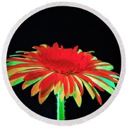 Christmas Daisy Round Beach Towel