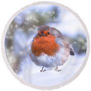 Round Beach Towel featuring the photograph Christmas Robin by Scott Carruthers