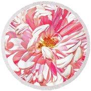 Chrysanthemum In Pink Round Beach Towel